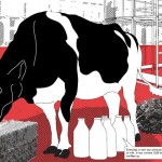 The Cow Project